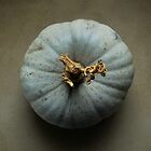 pumpkin by Anthony Mancuso