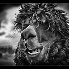 The Llama King by Wayman