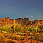 The Desert Aglow  by Saija  Lehtonen
