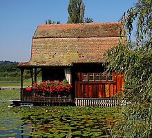 House on the Water by Daidalos