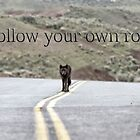 Follow your own road by Chris Perry