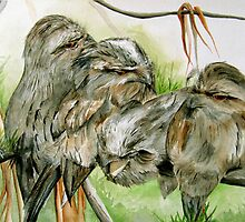 Tawny Frogmouth Family Series by Jacqui Cleijne