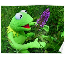 Orchid Getuepfeltes Frog Kermit Green Poster