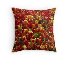 Tulip Field Back Light Light Seem Throw Pillow