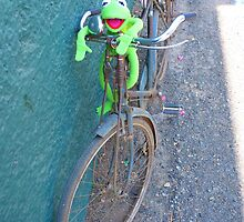 Bike Old Cycling Frog Kermit by HQPhotos