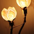Glowing Tulips  by ChloeFaye