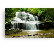 WoodCove Falls! Canvas Print
