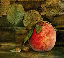 Peach by Barbara Ingersoll