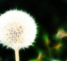 Fractal Dandelion  by Davgoss