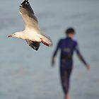 Walk on  #5   -  Taking Flight  by bekyimage