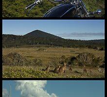 Clarence Peak.....Yachts, Kangaroos and a Motorbike by myraj