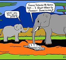 The Reason Elephants Never Forget by Noel Elliot