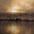 Early Morning Elk Lake Oregon  by Don Siebel