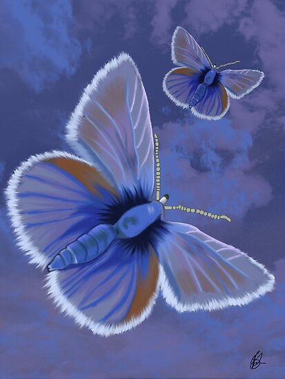 Butterflies by JillySB