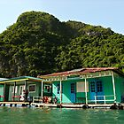 Floating Village #8 School - Halong Bay - Vietnam by Malcolm Heberle