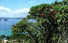 Roberton Island...........! by Roy  Massicks