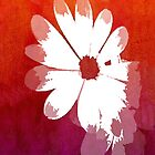 Daisy Burst Retro in Orange by Patricia L. Walker