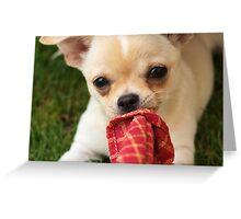 Cookie Greeting Card