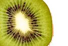 Kiwi Fruit by Fern Blacker