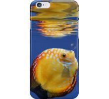 Tropicalfish in a blue ocean iPhone Case/Skin