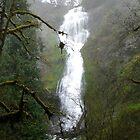 Oregon Scenery by Jess Meacham