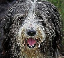 Happy Dog :) by Susie Peek