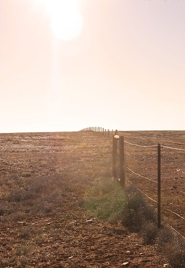 Dog Fence by JessicaHayley