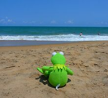 Beach Sea Sea ​​view Water Lonely Frog by HQPhotos