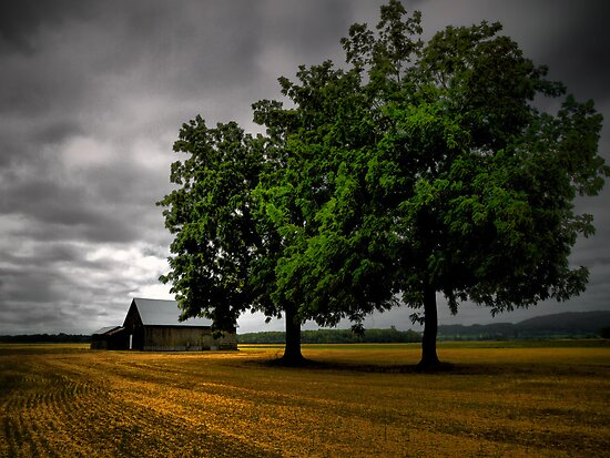 The Old Place by Charles & Patricia   Harkins ~ Picture Oregon