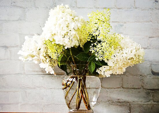 Limelight hydrangea in Vase  by KSKphotography