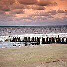 Folly Beach at Sunset by torib