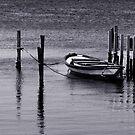 boat (mono) by Yannis-Tsif