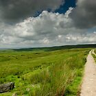 The Road to Kettlewell by James Elkington