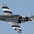 P51D Mustang  by mooneyes