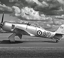 Black and white image of Hawker Sea fury. by mooneyes