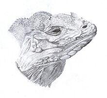 Iguana by A V S TURNER