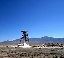 The Salt Mine by marilyn diaz