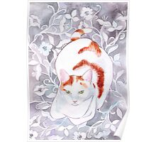 Cat on Grey Silk Poster
