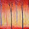 Parallel lines in the trees  $ 20.00 Voucher for September- members only