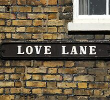 Love Lane by Celia Strainge