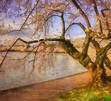 At The The Cherry Blossom Festival by Lois  Bryan