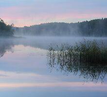 Dawn at the Lake Seliger by Irina Chuckowree