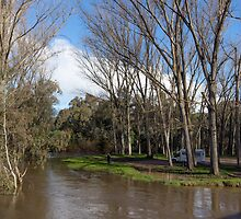 Ovens River Everton 2012 08183951 by Fred Mitchell