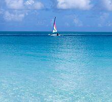 Sole yacht. by Anne Scantlebury