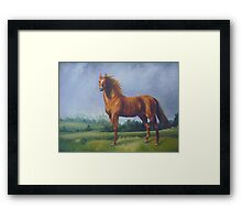 Man O'War Racehorse Framed Print