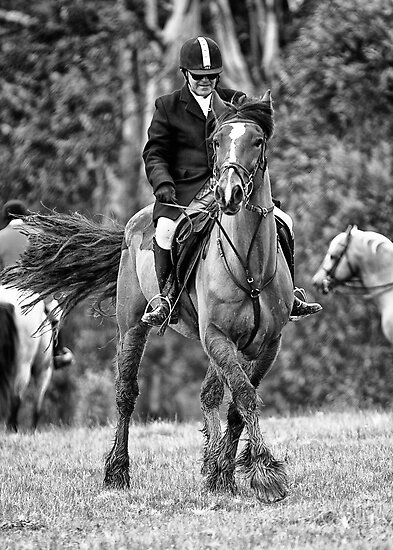 Riding not Dancing by Judith Cahill