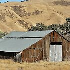 Metal Topped Barn by Martha Sherman