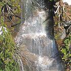 Small Waterfall on Mount Rainer  by Kelly Walker