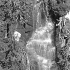 Waterfall on Mount Rainier in Black & White by Kelly Walker