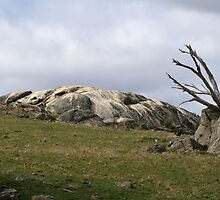 Granite formation on a hill by Kelly Walker